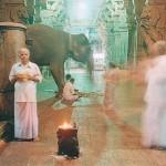 Peter Bialobreski's Journey into the Spiritual Heart of India